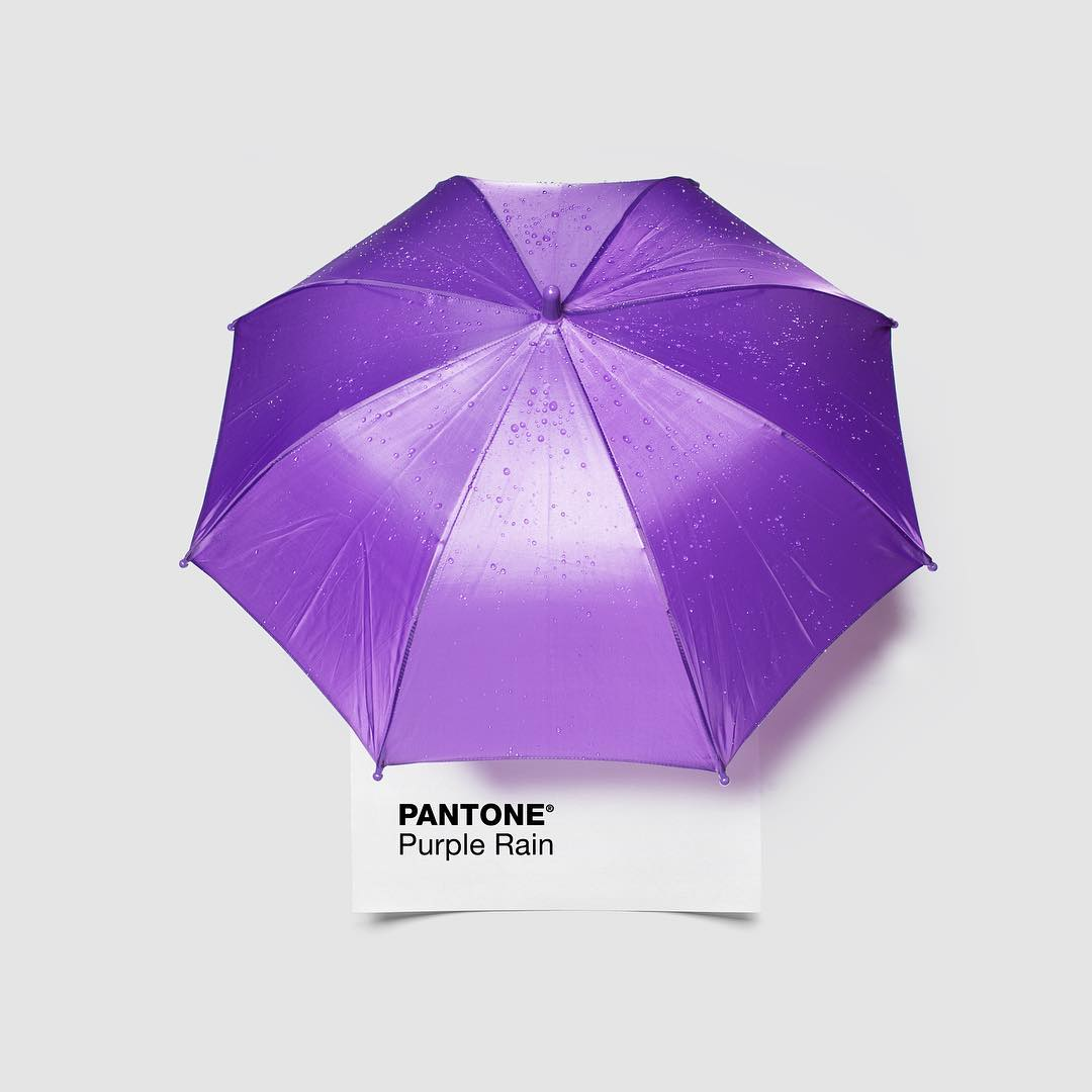"""In Minneapolis, it seems like everyone has a Prince story. The first time we saw him was at Paisley Park in '09, where he called George Clinton on stage by saying, """"Where you at, Snuffleupagus?!"""" What's your favorite #Prince story? #RIPPrince #RestInPurple #PurpleRain #PantonePairings"""